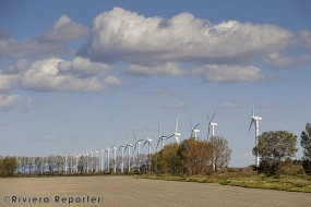 Wind farm, Camargue