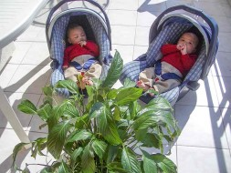Babies on a Riviera balcony