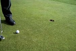 Golf Tips from Thomas Vander Clock - Putting short
